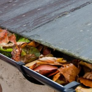 Photo of leaves in a house roof gutter