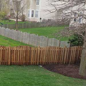 Photo of soft washed wooden fence restored to its natural color