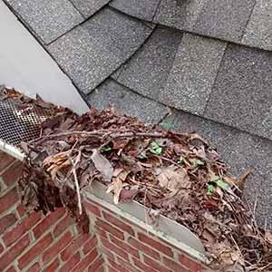 Clogged gutter full of leaves